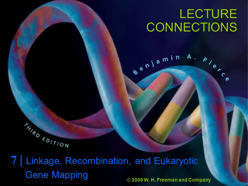 LECTURE CONNECTIONS 7 | Linkage, Recombination, and Eukaryotic © 2009 W.