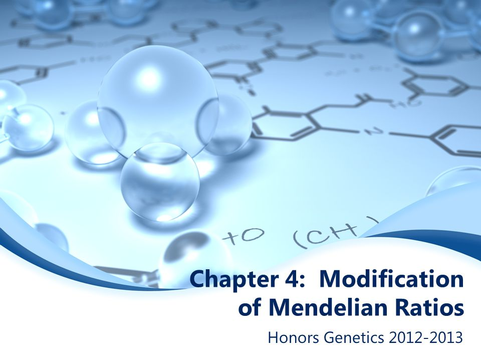Chapter 4: Modification of Mendelian Ratios Honors Genetics 2012-2013