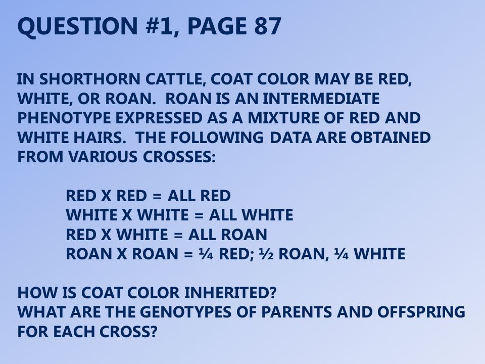 QUESTION #1, PAGE 87 IN SHORTHORN CATTLE, COAT COLOR MAY BE RED, WHITE, OR ROAN.