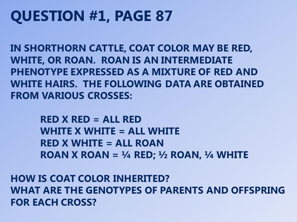 RED X RED = ALL RED C R /C R X C R /C R = C R /C R WHITE X WHITE = ALL WHITE C W /C W X C W /C W = C W /C W RED X WHITE = ALL ROAN C R /C R X C W /C W = C R /C W ROAN X ROAN = ¼ RED; ½ ROAN, ¼ WHITE C R /C W X C R /C W = C R /C R, C R /C W, C W /C W CRCR CRCR CWCW CWCRCWCR CWCRCWCR CWCW CWCRCWCR CWCRCWCR CRCR CWCW CRCR CRCRCRCR CWCRCWCR CWCW CRCWCRCW CWCWCWCW