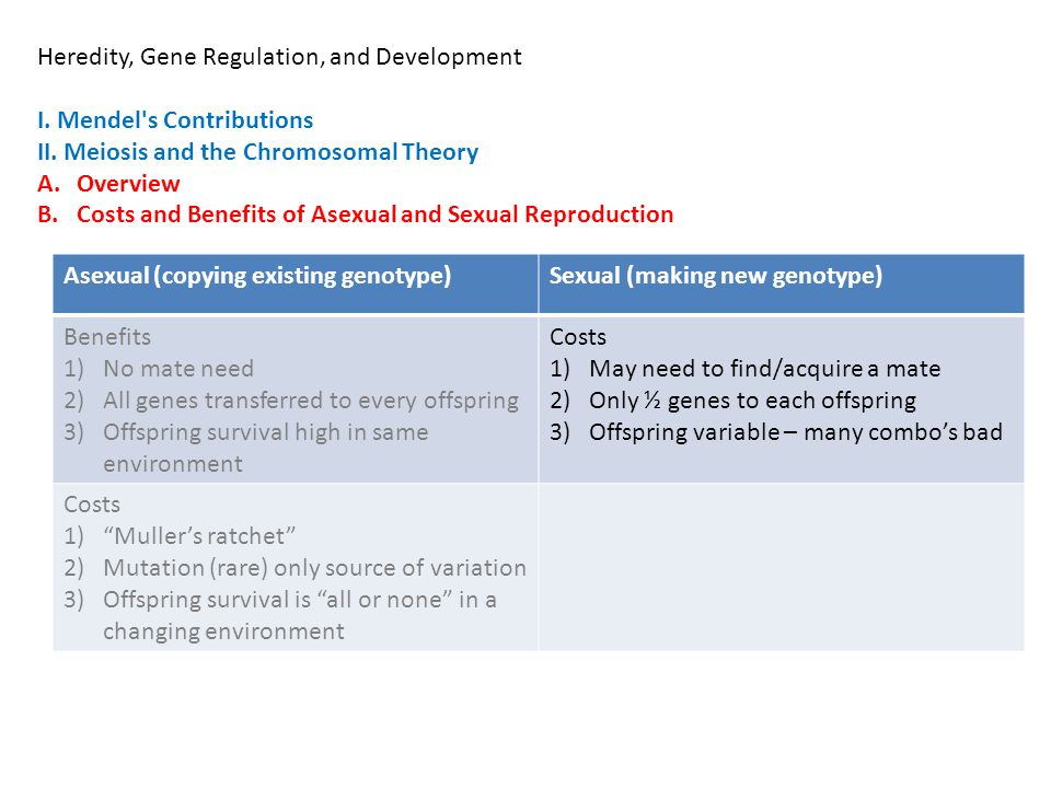 Heredity, Gene Regulation, and Development I. Mendel's Contributions II. Meiosis and the Chromosomal Theory A.Overview B.Costs and Benefits of Asexual