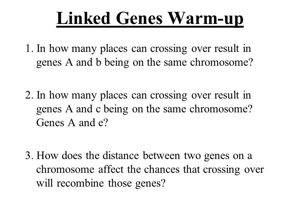 Linked Genes Warm-up 1.