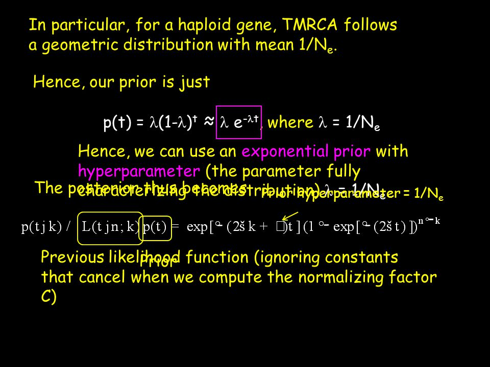 In particular, for a haploid gene, TMRCA follows a geometric distribution with mean 1/N e. Hence, our prior is just p(t) = (1- ) t ≈ e - t, where = 1/