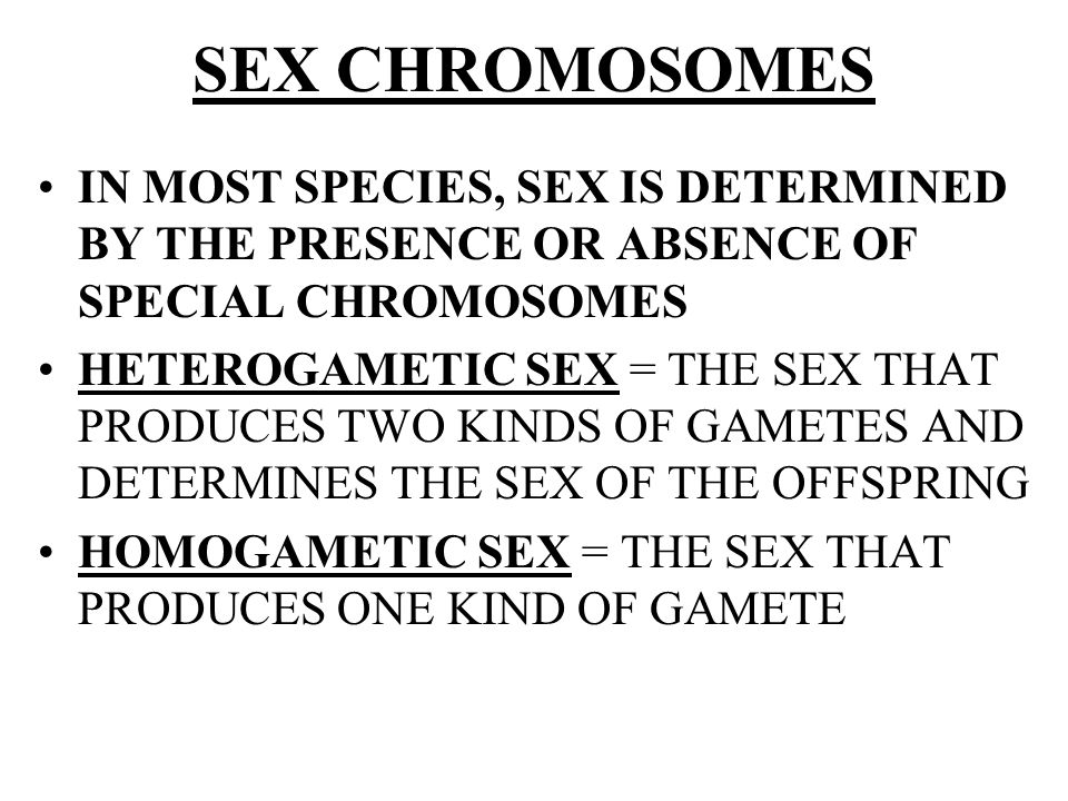 SEX CHROMOSOMES IN MOST SPECIES, SEX IS DETERMINED BY THE PRESENCE OR ABSENCE OF SPECIAL CHROMOSOMES HETEROGAMETIC SEX = THE SEX THAT PRODUCES TWO KIN