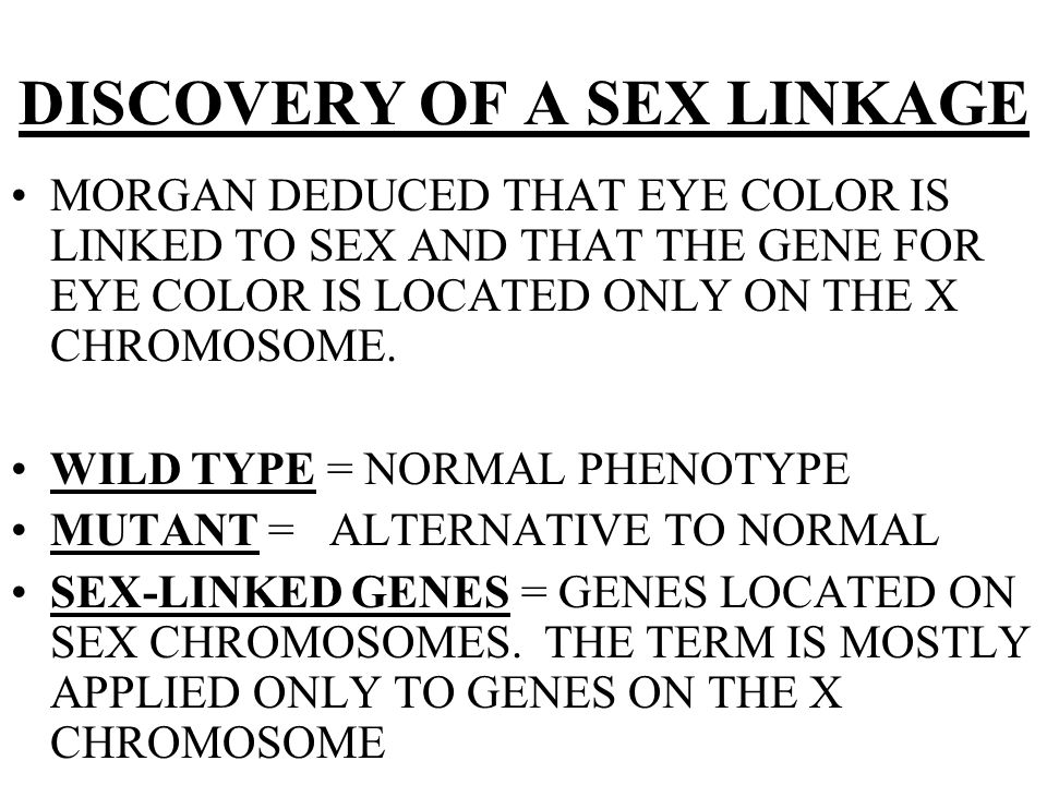 DISCOVERY OF A SEX LINKAGE MORGAN DEDUCED THAT EYE COLOR IS LINKED TO SEX AND THAT THE GENE FOR EYE COLOR IS LOCATED ONLY ON THE X CHROMOSOME. WILD TY
