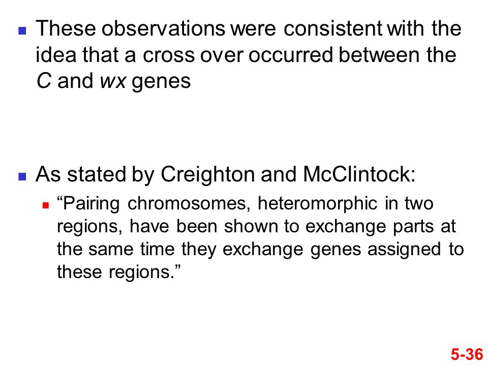 """5-36 These observations were consistent with the idea that a cross over occurred between the C and wx genes As stated by Creighton and McClintock: """"Pa"""