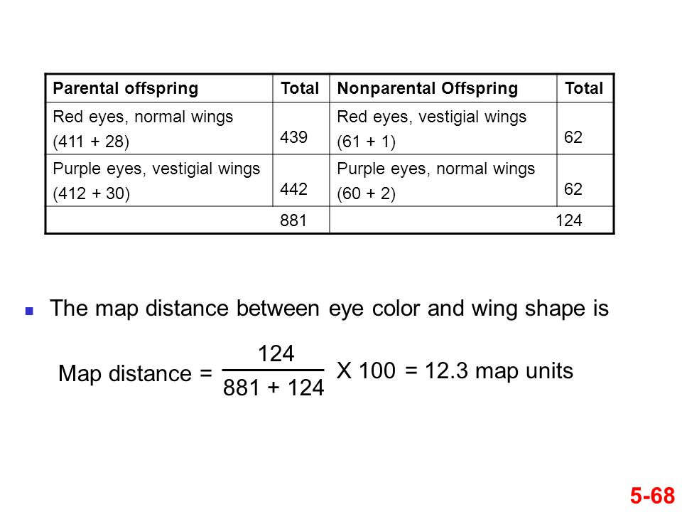 5-68 Parental offspringTotalNonparental OffspringTotal Red eyes, normal wings (411 + 28) 439 Red eyes, vestigial wings (61 + 1) 62 Purple eyes, vestig