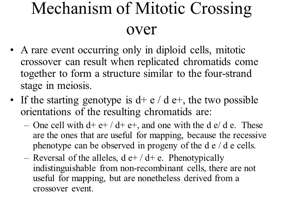 Mechanism of Mitotic Crossing over A rare event occurring only in diploid cells, mitotic crossover can result when replicated chromatids come together