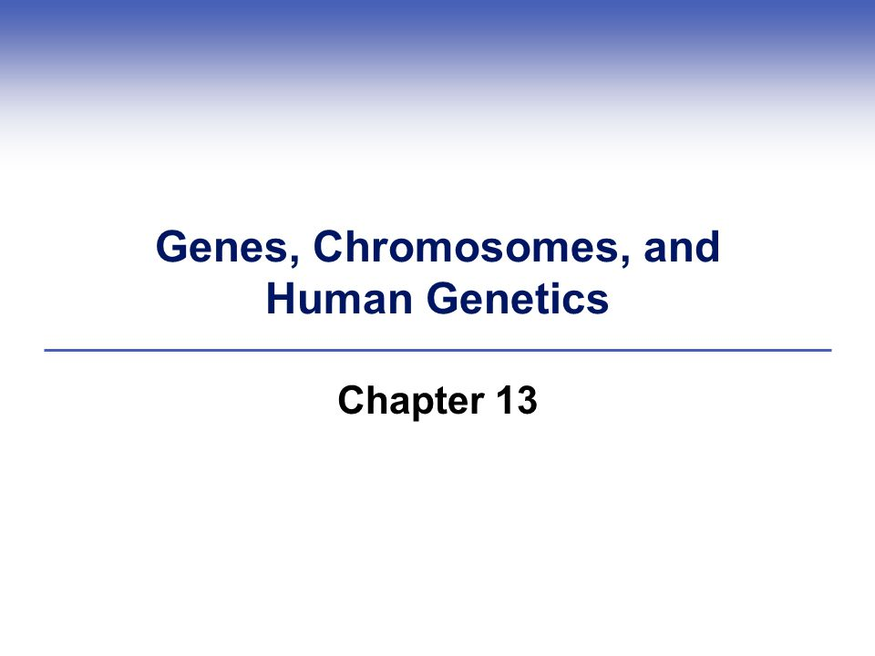 Genes, Chromosomes, and Human Genetics Chapter 13
