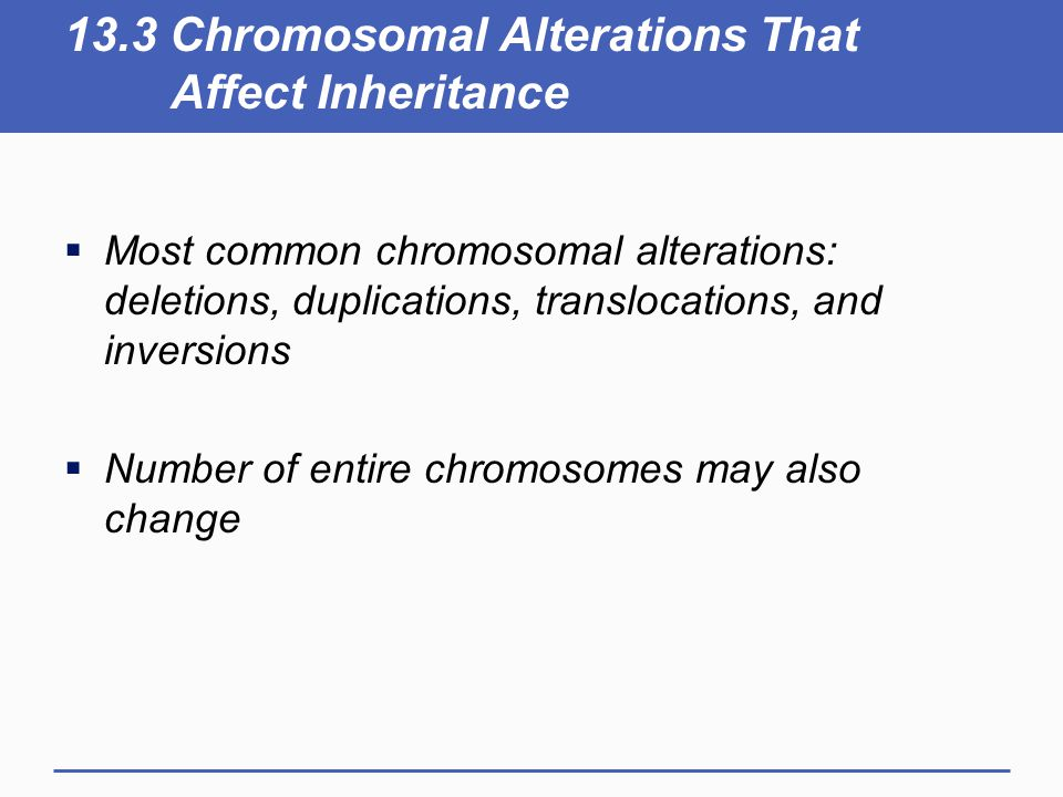 13.3 Chromosomal Alterations That Affect Inheritance  Most common chromosomal alterations: deletions, duplications, translocations, and inversions  Number of entire chromosomes may also change