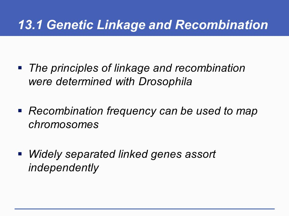 13.1 Genetic Linkage and Recombination  The principles of linkage and recombination were determined with Drosophila  Recombination frequency can be