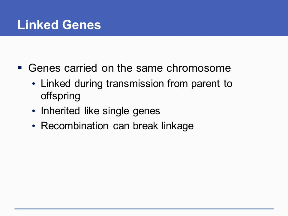 Linked Genes  Genes carried on the same chromosome Linked during transmission from parent to offspring Inherited like single genes Recombination can break linkage