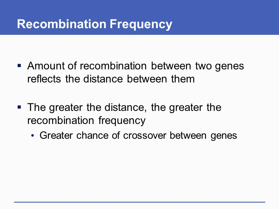 Recombination Frequency  Amount of recombination between two genes reflects the distance between them  The greater the distance, the greater the recombination frequency Greater chance of crossover between genes