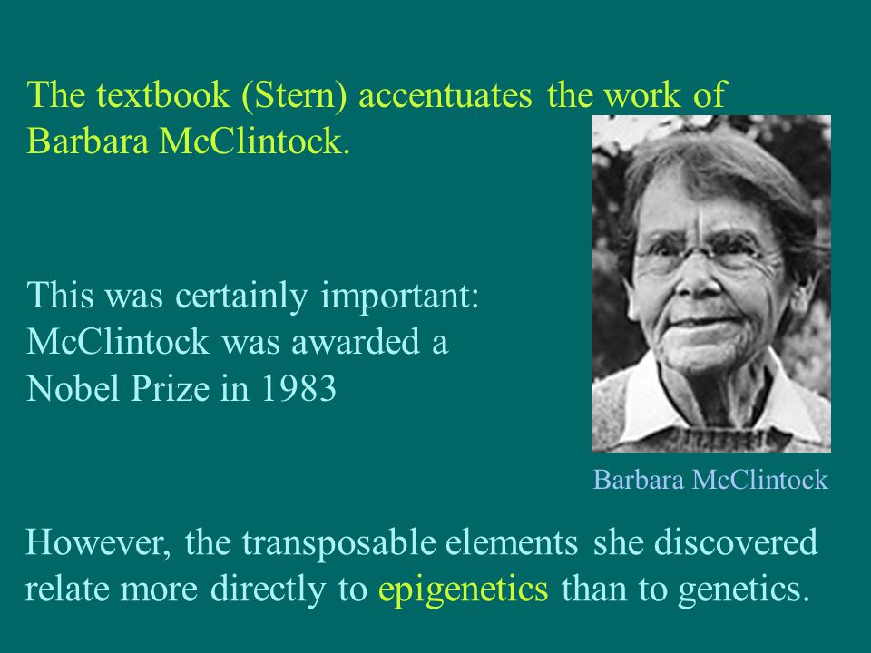 The textbook (Stern) accentuates the work of Barbara McClintock. This was certainly important: McClintock was awarded a Nobel Prize in 1983 However, t