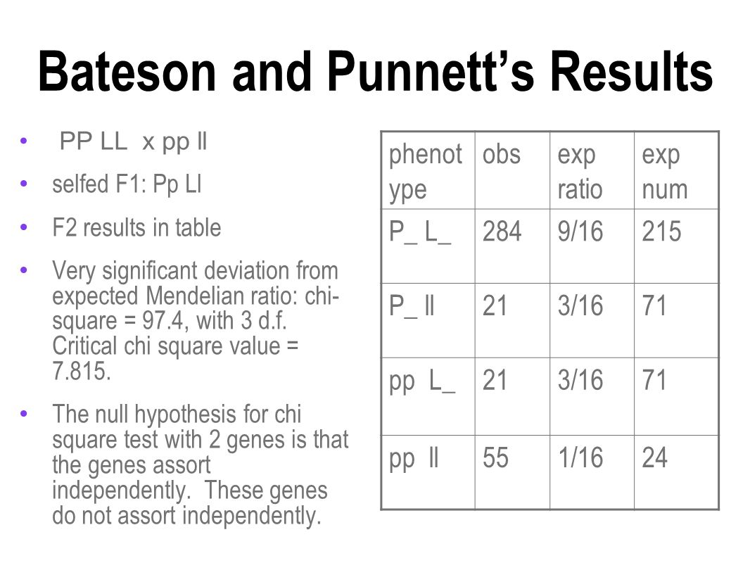 Bateson and Punnett's Results PP LL x pp ll selfed F1: Pp Ll F2 results in table Very significant deviation from expected Mendelian ratio: chi- square