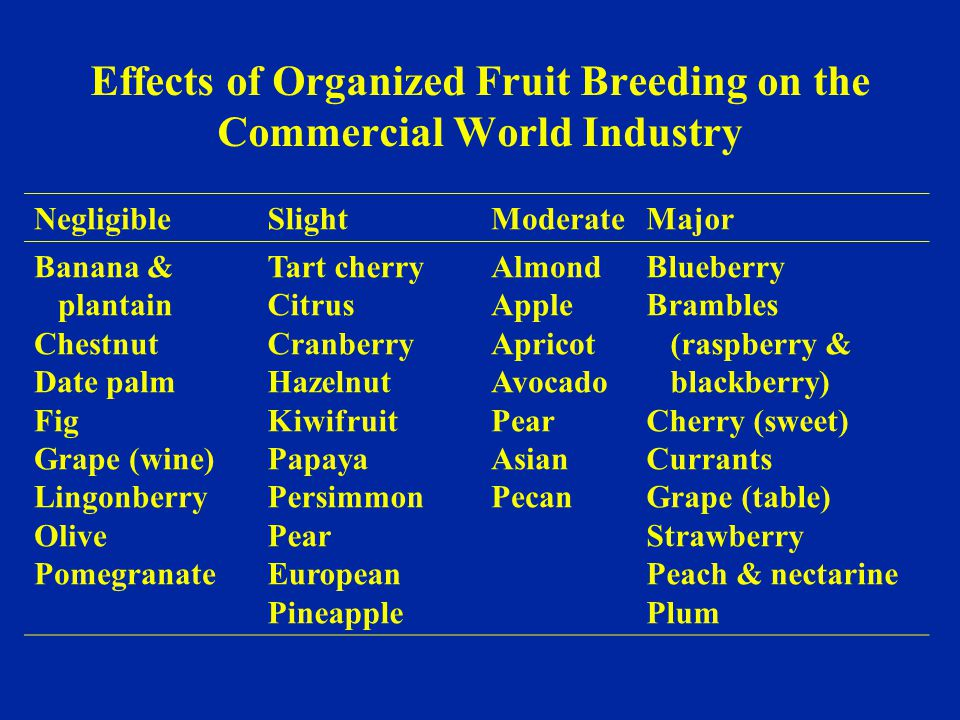 Effects of Organized Fruit Breeding on the Commercial World Industry NegligibleSlightModerateMajor Banana & plantain Chestnut Date palm Fig Grape (win