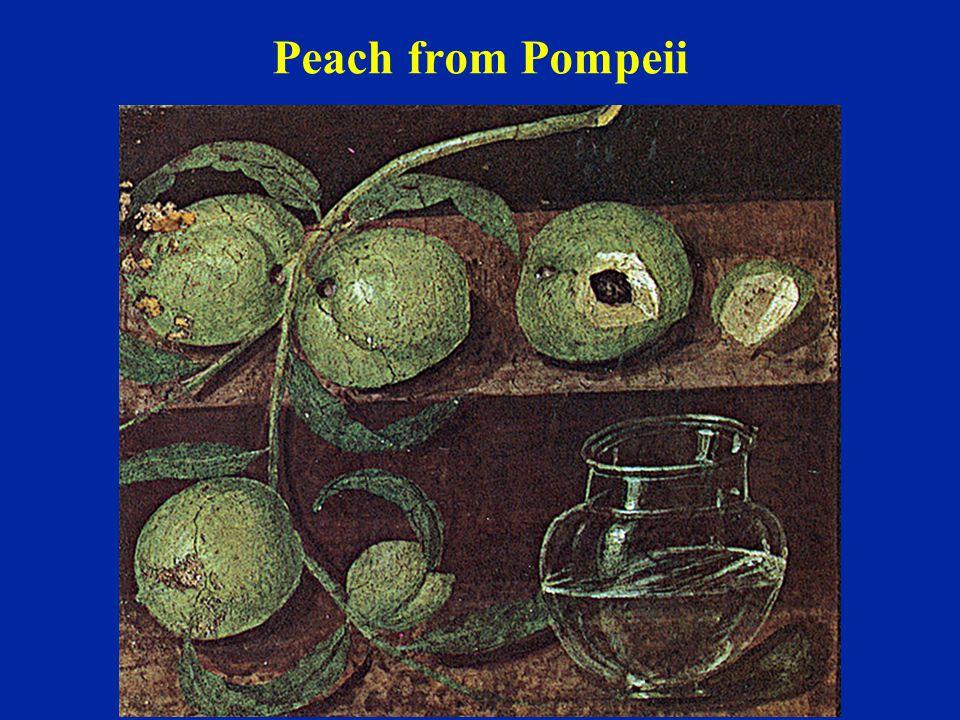 Peach from Pompeii