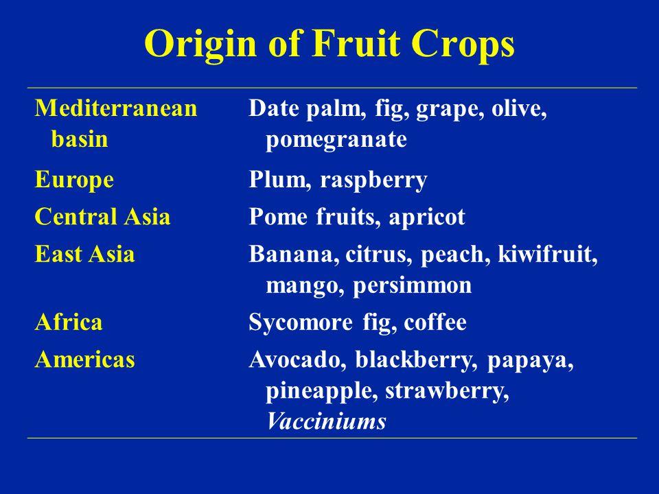 Origin of Fruit Breeding Jean Baptiste Van Mons (1765–1842) Thomas Andrew Knight (1759–1838)