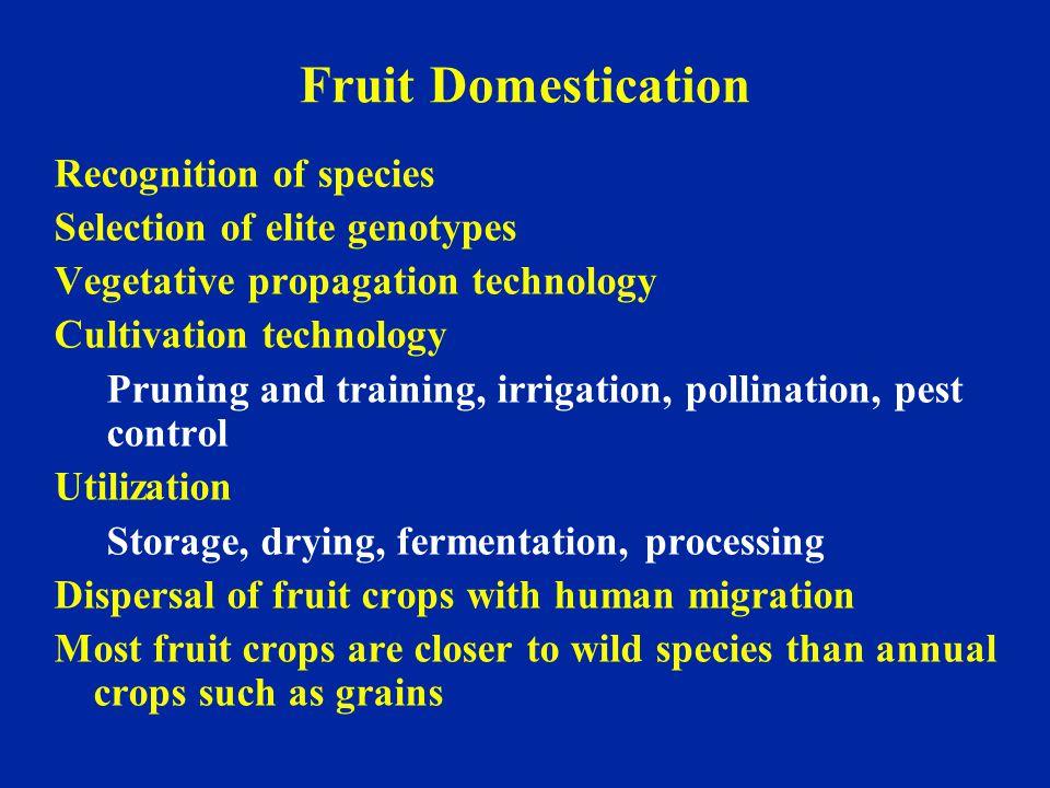 Origin of Fruit Breeding Gregor Mendel (1822–1884) Luther Burbank (1849–1926)