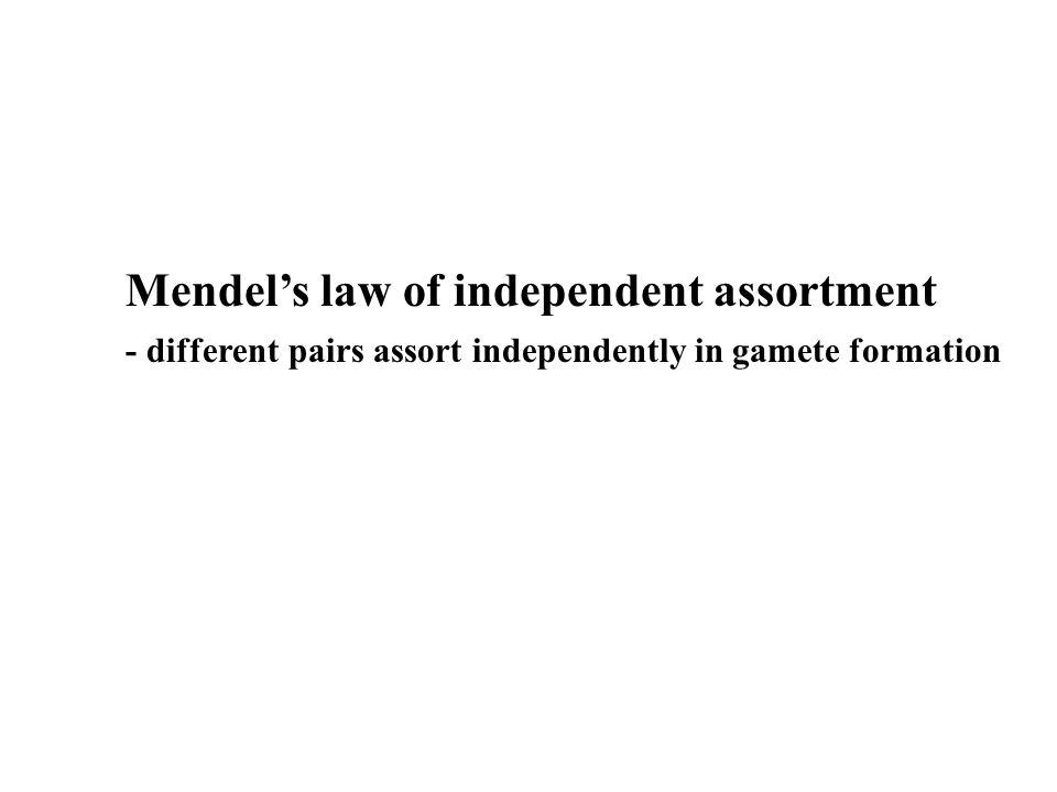 Mendel's law of independent assortment - different pairs assort independently in gamete formation