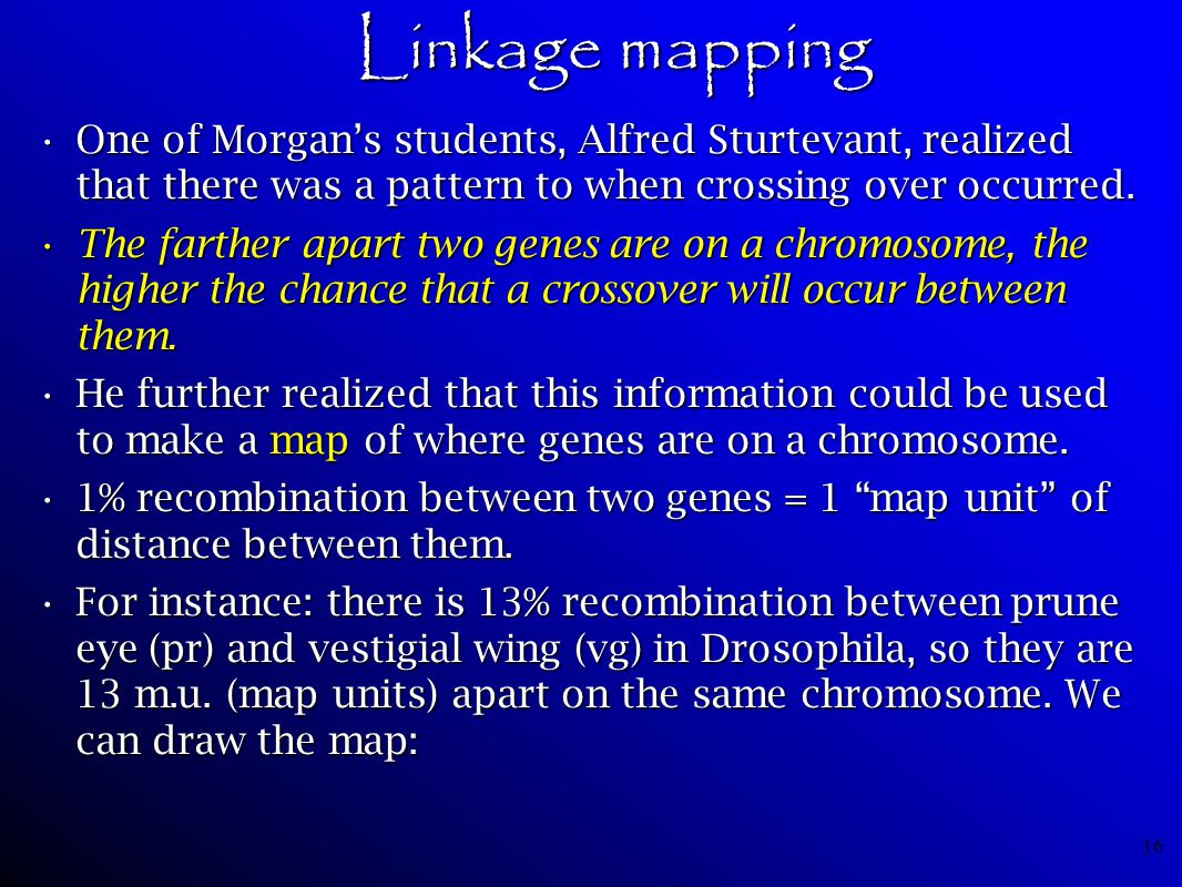 16 Linkage mapping One of Morgan's students, Alfred Sturtevant, realized that there was a pattern to when crossing over occurred.One of Morgan's stude