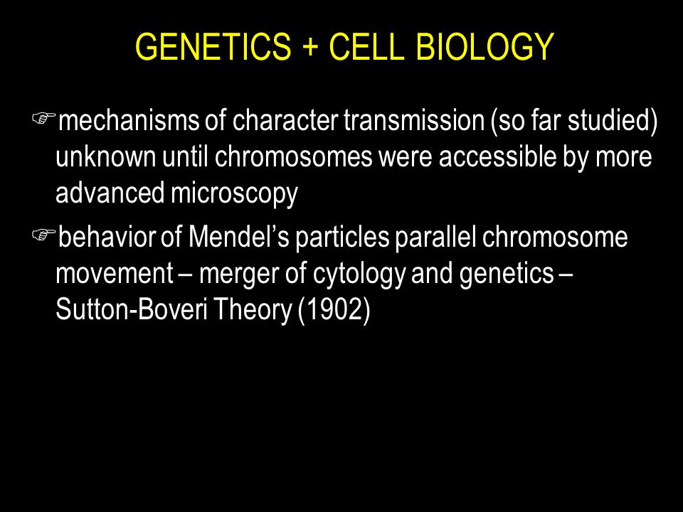 GENETICS + CELL BIOLOGY F mechanisms of character transmission (so far studied) unknown until chromosomes were accessible by more advanced microscopy F behavior of Mendel's particles parallel chromosome movement – merger of cytology and genetics – Sutton-Boveri Theory (1902)