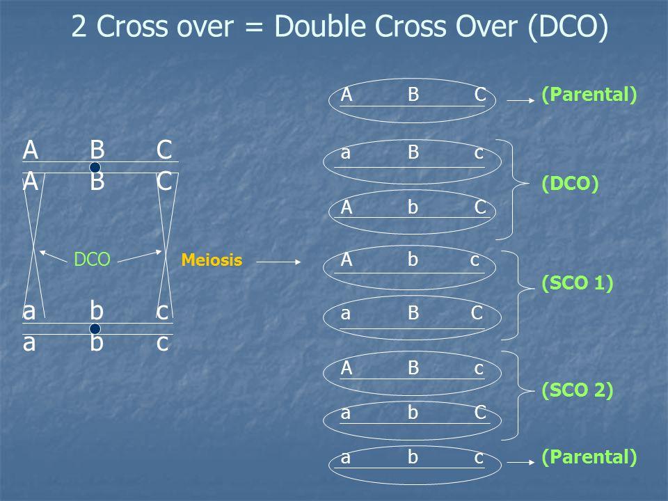 Max. # of Cross-overs: 2 Linked Genes 1 Cross-over (SCO) 3 Linked Genes2 Cross-overs (DCO)