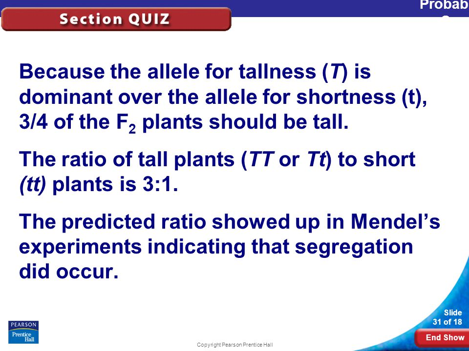 End Show Slide 31 of 18 Copyright Pearson Prentice Hall Probability and Segregation Because the allele for tallness (T) is dominant over the allele for shortness (t), 3/4 of the F 2 plants should be tall.