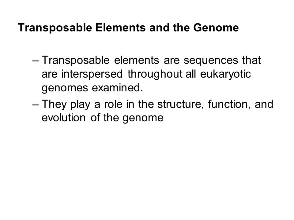 –Transposable elements are sequences that are interspersed throughout all eukaryotic genomes examined. –They play a role in the structure, function, a