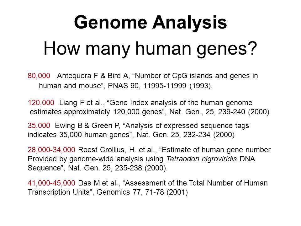 "How many human genes? 80,000 Antequera F & Bird A, ""Number of CpG islands and genes in human and mouse"", PNAS 90, 11995-11999 (1993). 120,000 Liang F"