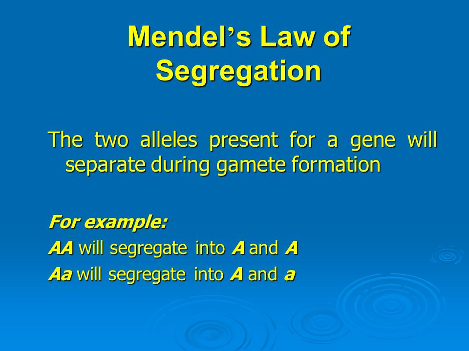 Mendel ' s Law of Segregation The two alleles present for a gene will separate during gamete formation For example: AA will segregate into A and A Aa