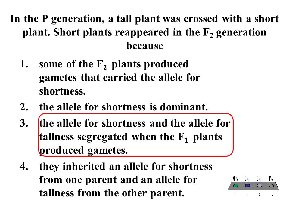 In the P generation, a tall plant was crossed with a short plant. Short plants reappeared in the F 2 generation because 1.some of the F 2 plants produ