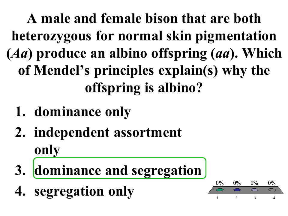 A male and female bison that are both heterozygous for normal skin pigmentation (Aa) produce an albino offspring (aa). Which of Mendel's principles ex
