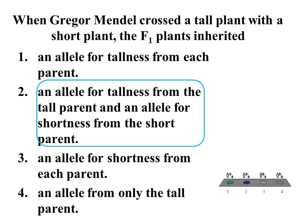 When Gregor Mendel crossed a tall plant with a short plant, the F 1 plants inherited 1.an allele for tallness from each parent. 2.an allele for tallne