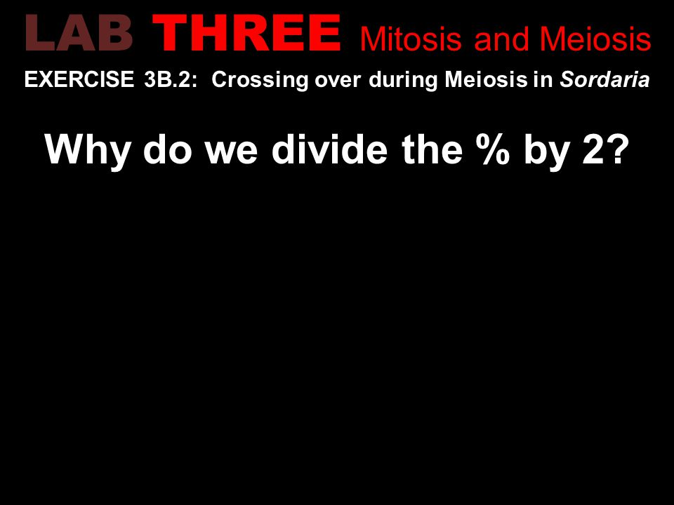 EXERCISE 3B.2: Crossing over during Meiosis in Sordaria Why do we divide the % by 2.