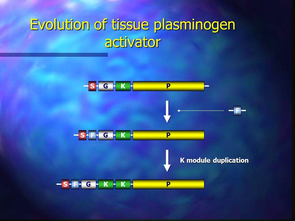 Evolution of tissue plasminogen activator PSGKPSGKF F K module duplication PSGKFK