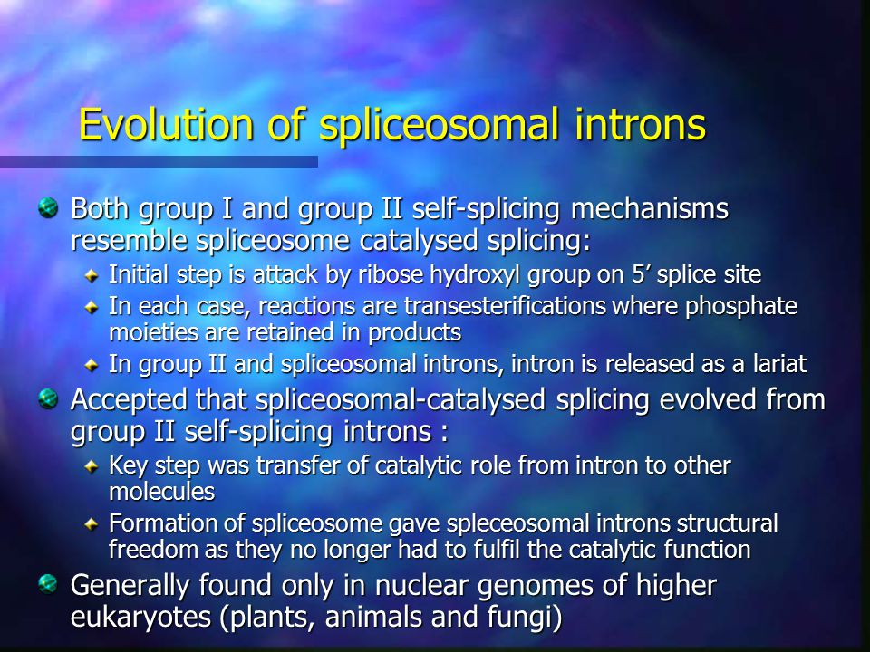 Evolution of spliceosomal introns Both group I and group II self-splicing mechanisms resemble spliceosome catalysed splicing: Initial step is attack by ribose hydroxyl group on 5' splice site In each case, reactions are transesterifications where phosphate moieties are retained in products In group II and spliceosomal introns, intron is released as a lariat Accepted that spliceosomal-catalysed splicing evolved from group II self-splicing introns : Key step was transfer of catalytic role from intron to other molecules Formation of spliceosome gave spleceosomal introns structural freedom as they no longer had to fulfil the catalytic function Generally found only in nuclear genomes of higher eukaryotes (plants, animals and fungi)