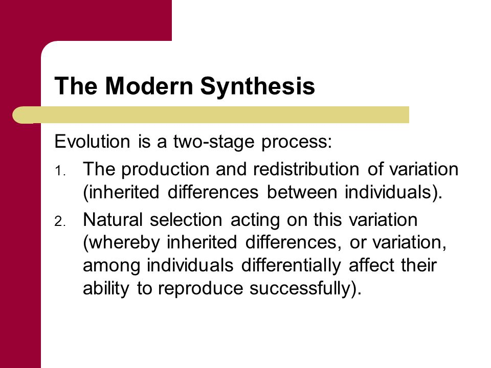 The Modern Synthesis Evolution is a two-stage process: 1. The production and redistribution of variation (inherited differences between individuals).