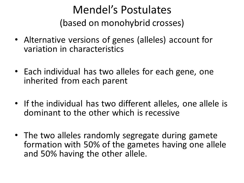 Allelic Interactions Complete Dominance Partial Dominance Codominance Multiple Alleles Pleiotropy Multigenic traits Environmental Interactions
