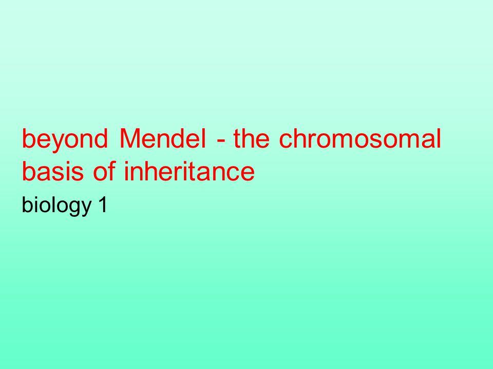 beyond Mendel - the chromosomal basis of inheritance biology 1