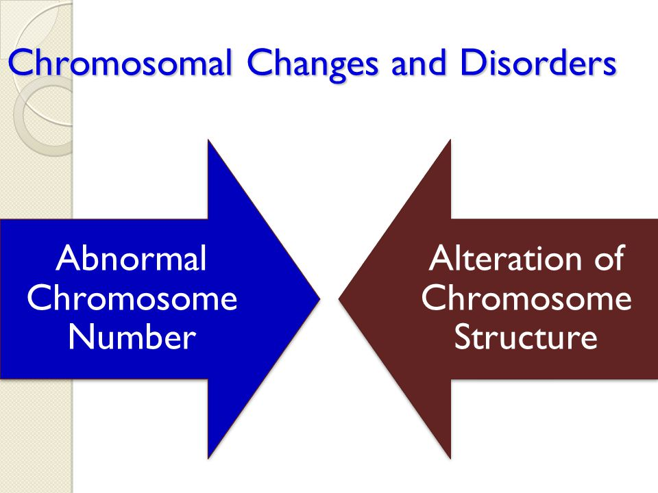 Chromosomal Changes and Disorders Abnormal Chromosome Number Alteration of Chromosome Structure