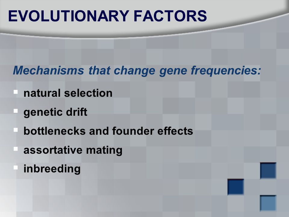 Mechanisms that change gene frequencies:  natural selection  genetic drift  bottlenecks and founder effects  assortative mating  inbreeding EVOLU