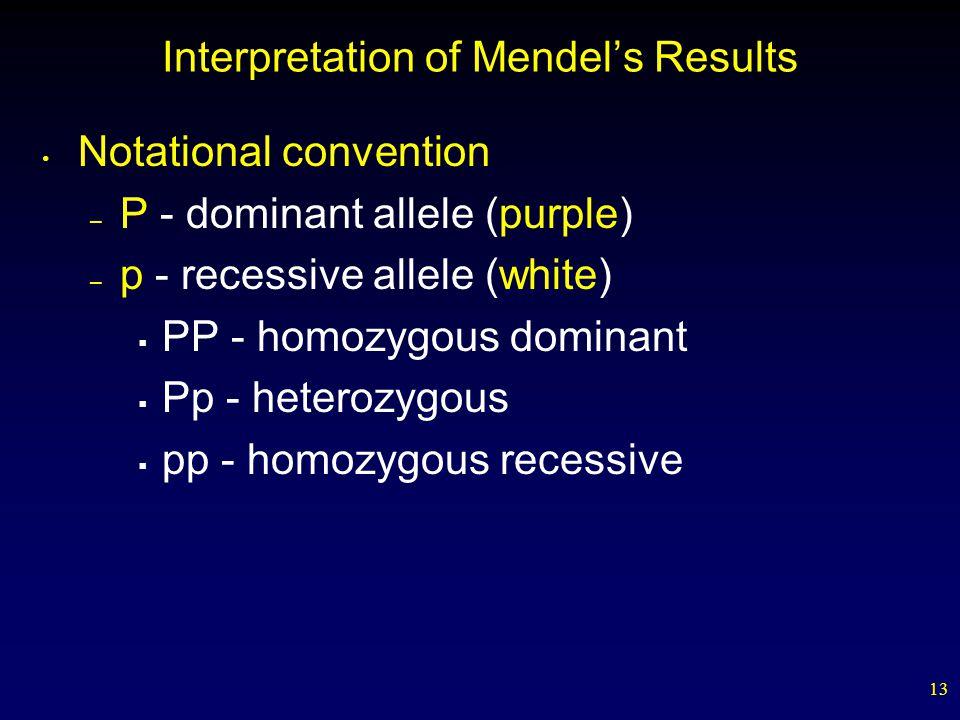 13 Interpretation of Mendel's Results Notational convention – P - dominant allele (purple) – p - recessive allele (white)  PP - homozygous dominant 