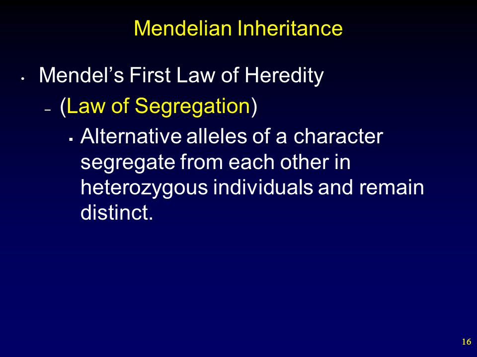 16 Mendelian Inheritance Mendel's First Law of Heredity – (Law of Segregation)  Alternative alleles of a character segregate from each other in heter