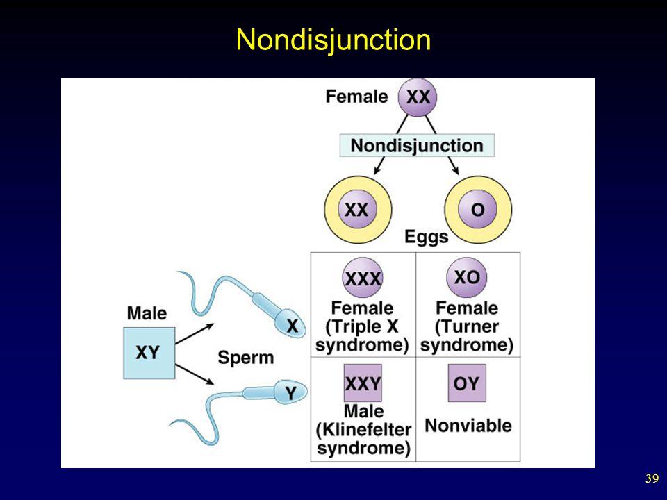 39 Nondisjunction