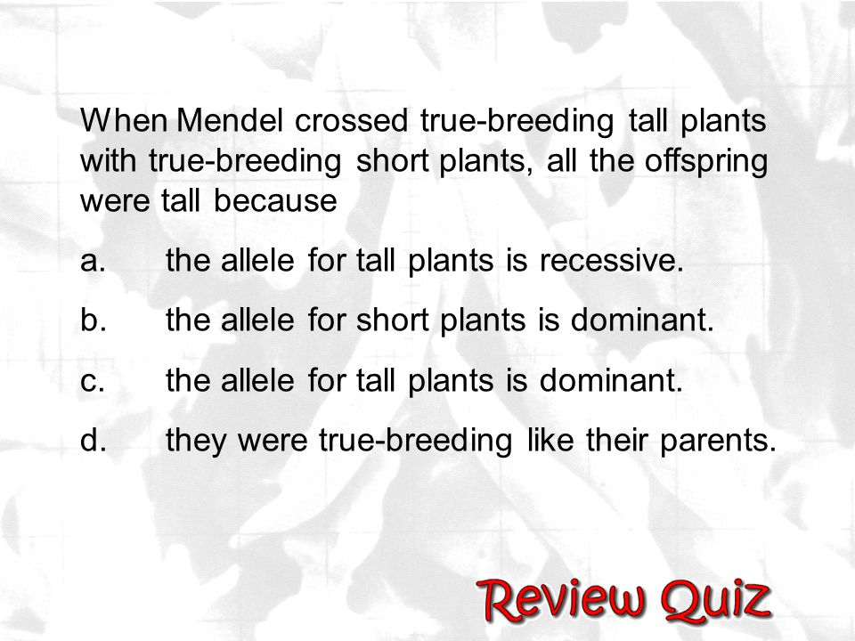 When Mendel crossed true-breeding tall plants with true-breeding short plants, all the offspring were tall because a.the allele for tall plants is rec