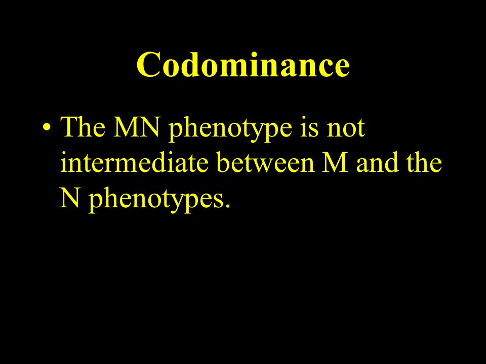 Codominance The MN phenotype is not intermediate between M and the N phenotypes.