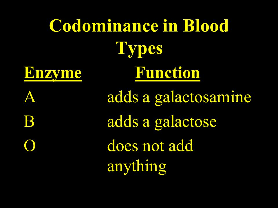 Codominance in Blood Types EnzymeFunction Aadds a galactosamine B adds a galactose O does not add anything