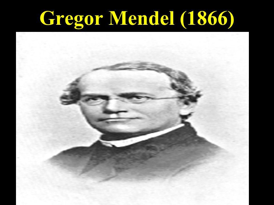 Gregor Mendel (1866)