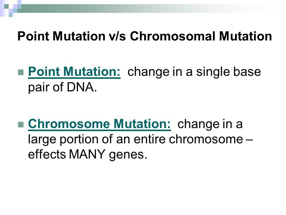 Point Mutation v/s Chromosomal Mutation Point Mutation: change in a single base pair of DNA. Chromosome Mutation: change in a large portion of an enti